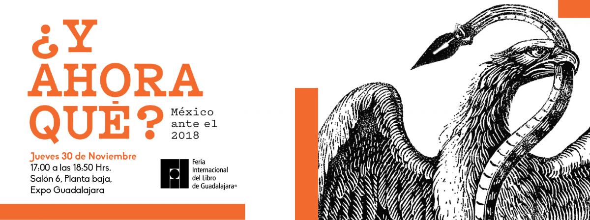 Conferencia y ahora qué?Feria internacional del LIbro, jueves 30 de noviembre