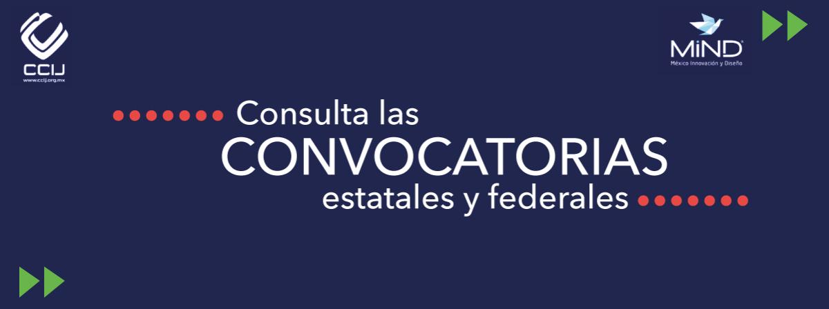 Convocatorias Dirección de Proyectos MIND México
