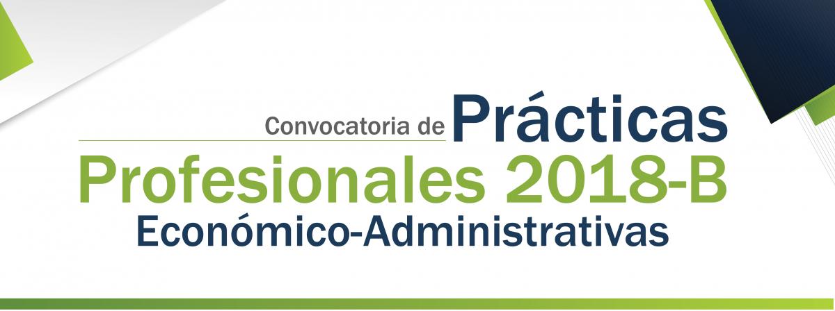 Practicas profesionales 2018-b